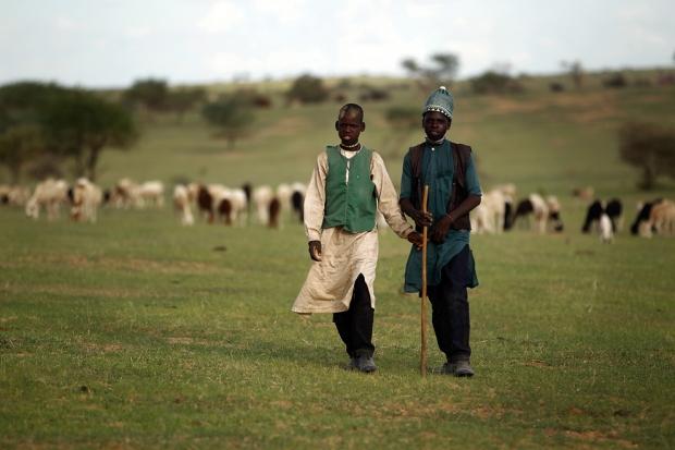 Βοσκοί στον Νίγηρα