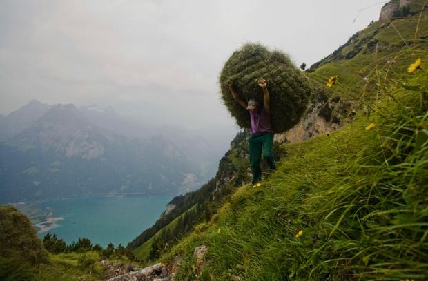 Αγρότης μεταφέρει χόρτα στο βουνό Rophaien στην Ελβετία