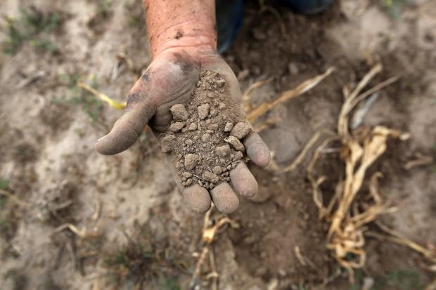 Αγρότης κοσκινίζει το άγονο χώμα από μια κατεστραμμένη σοδειά στο οικογενειακό αγρόκτημα Logan, Κάνσας