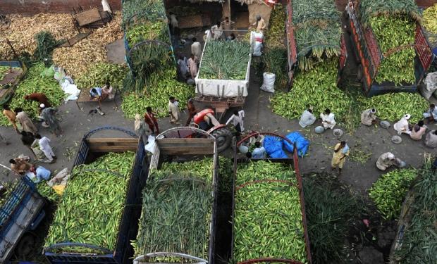 Αγρότες περιμένουν πελάτες για το καλαμπόκι που μάζεψαν στη Λαχόρη