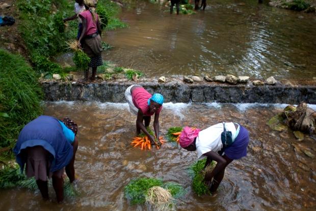 Γυναίκες πλένουν τα λαχανικά τους σε  ποτάμι στο La Visite National Park, στην Αϊτή