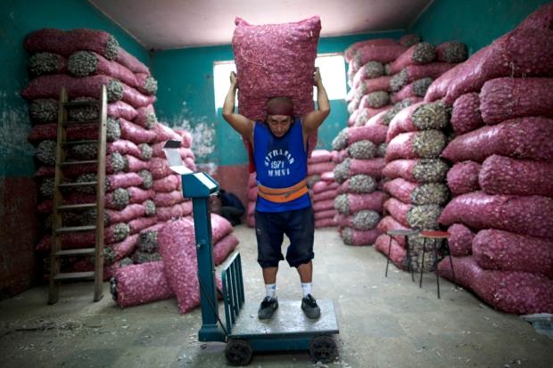 Ζυγίζεται ο σάκος με τα σκόρδα . Προορίζεται για  χονδρική πώληση στη Λίμα του Περού